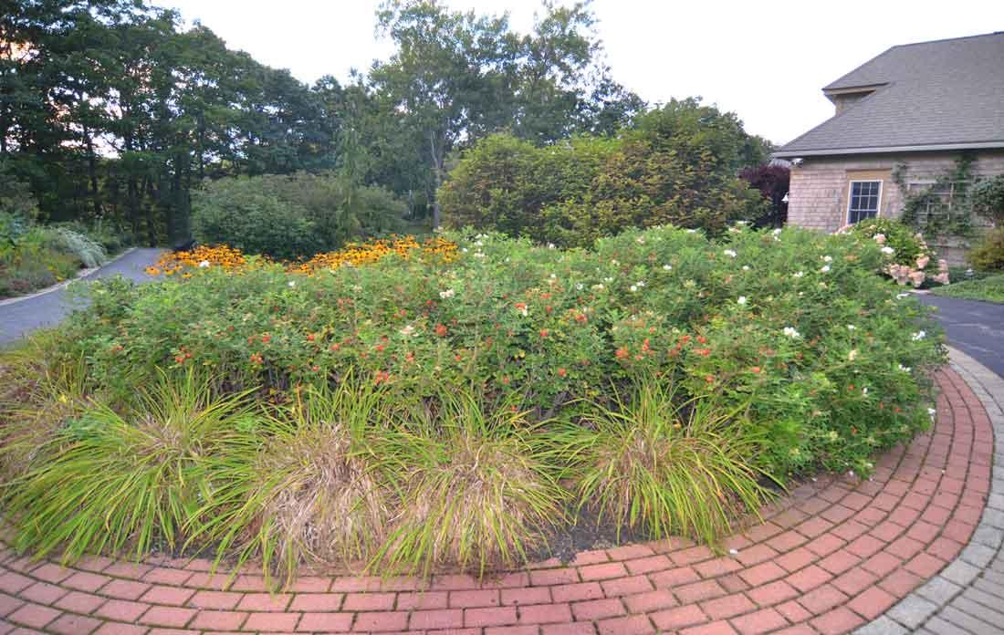 A planting bed fills the circular drive