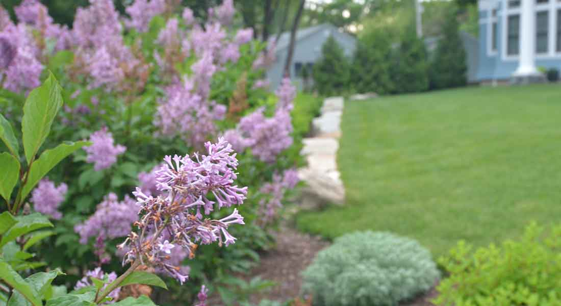 Flowering perennials and shrubs border the lawn