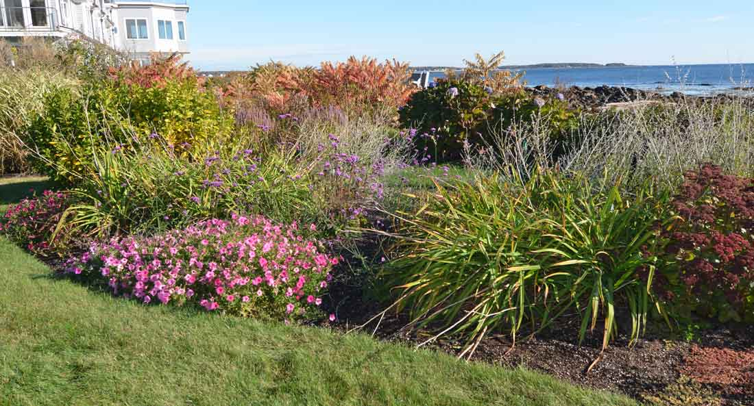 Flowering borders frame the view