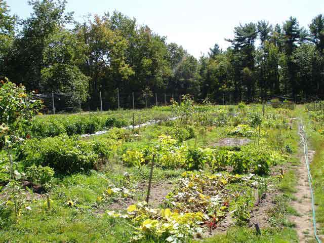 CL Design and Landscape led the creation of the Kennebunk Community Gardens in Kennebunk, Maine