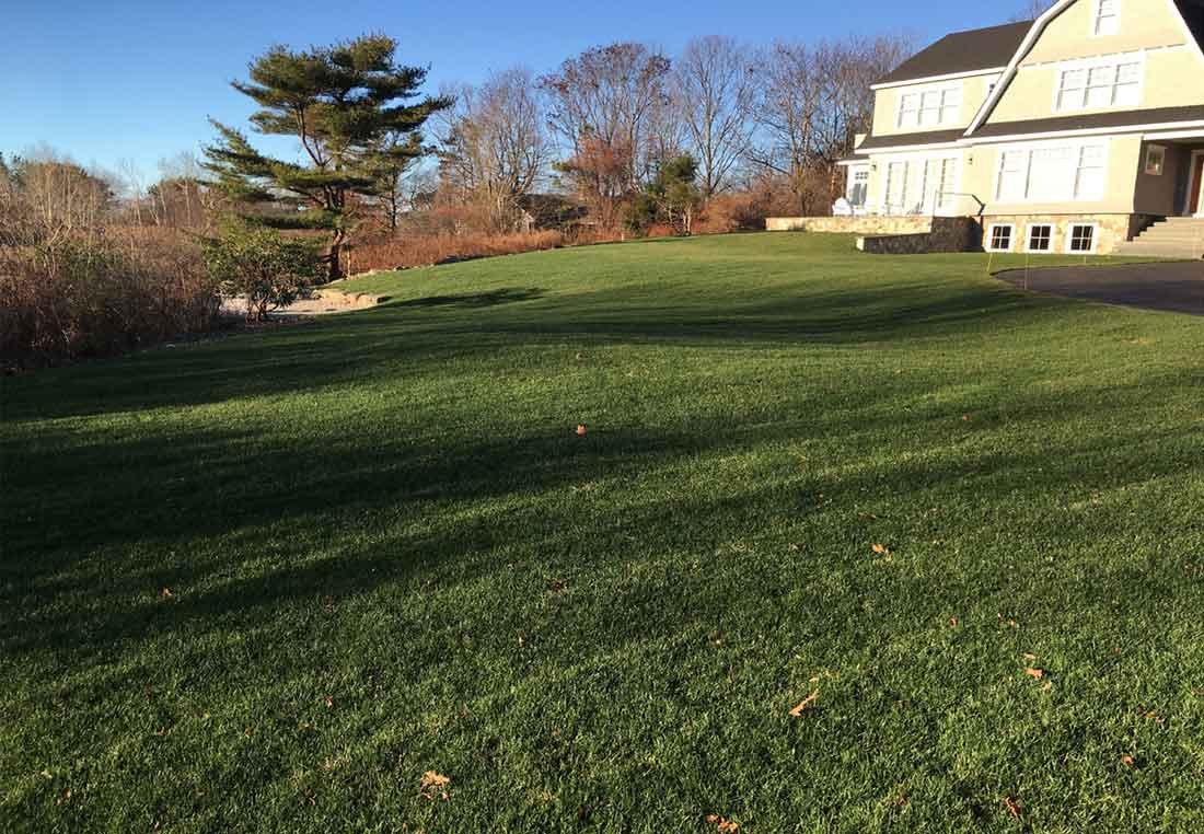 Landscaping for a steep grade