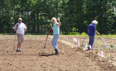 Caro Laboissonniere working with other volunteers on the Kennebunk Community Garden