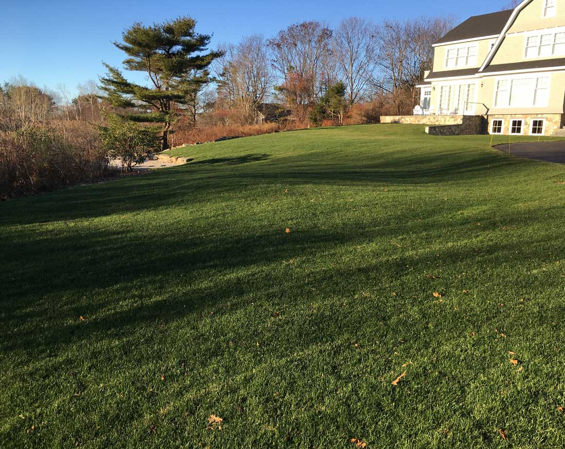 Installing a long sloping finish grade lawn