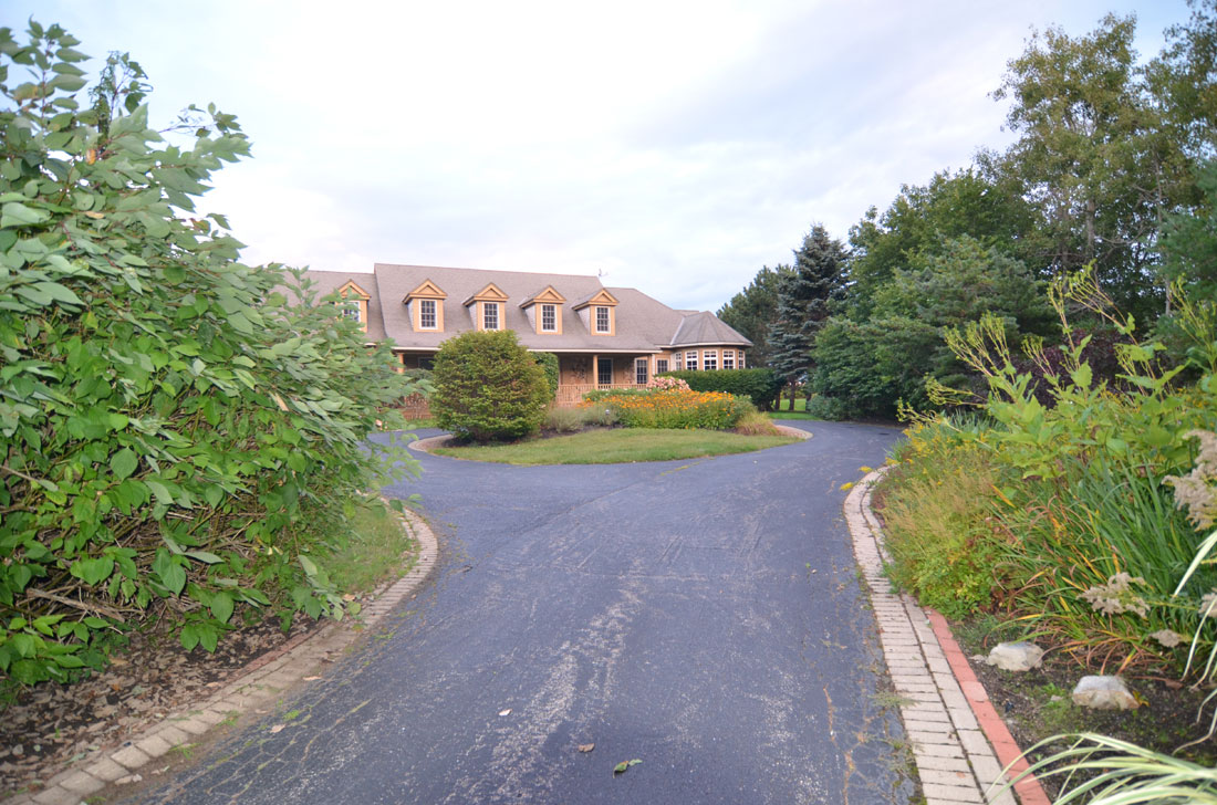 Curved driveway through dense growth