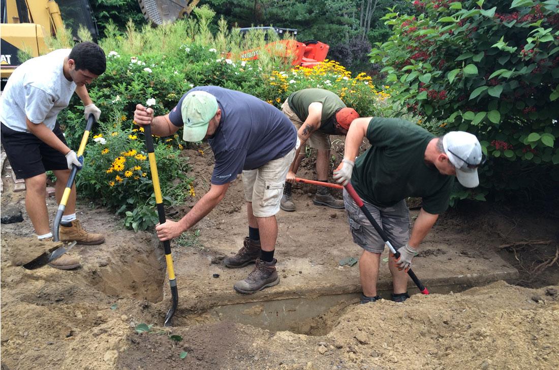Preparing ground for new shrubs