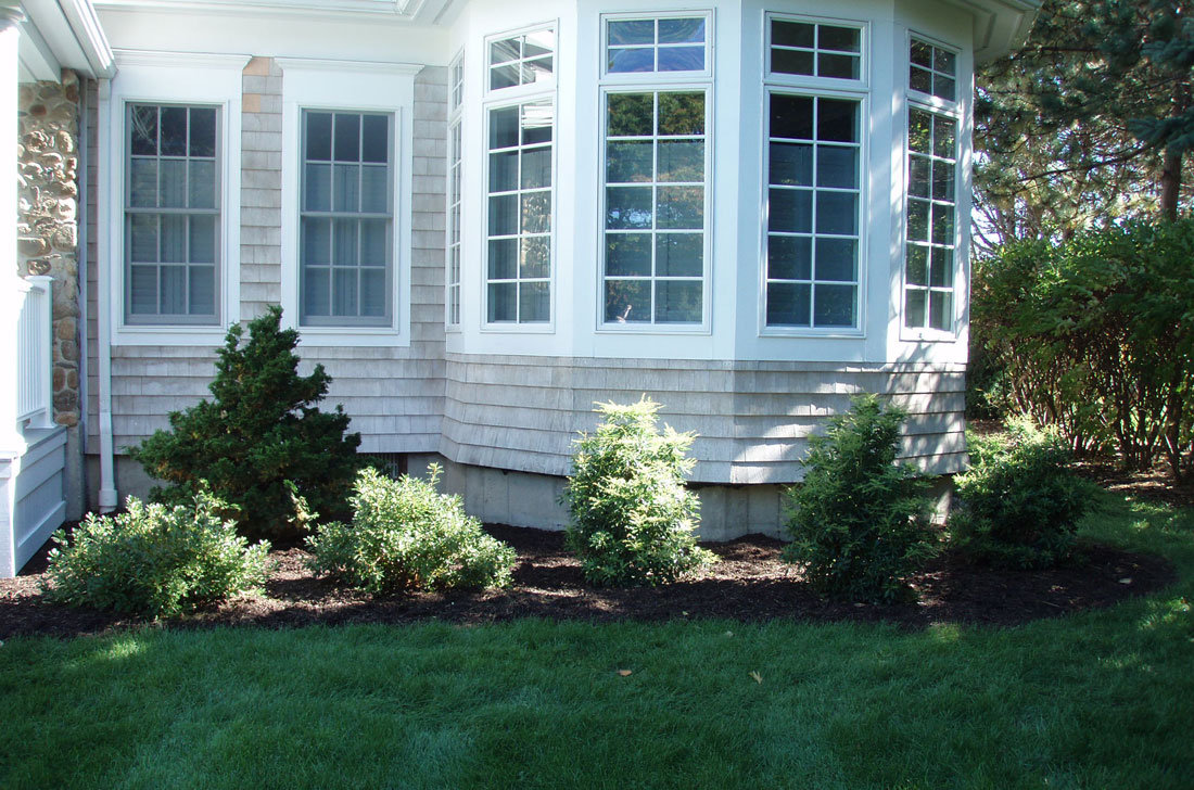 New plantings in front of house
