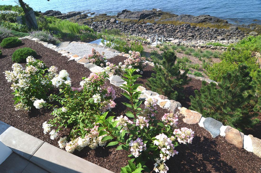 Steep bank planting challenge