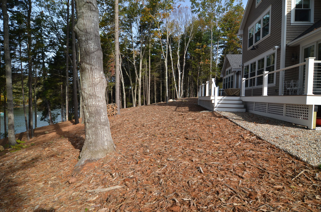 The finished landscape is graded and mulched to create a natural woodscape