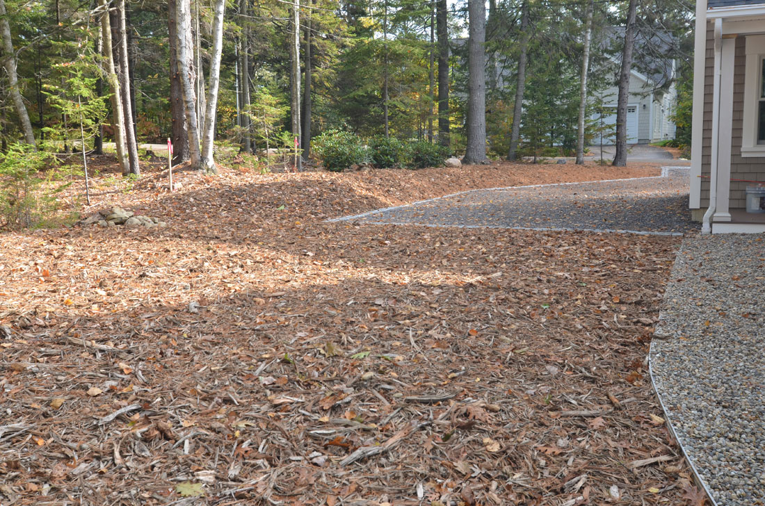 The side of the property is edged and mulched.