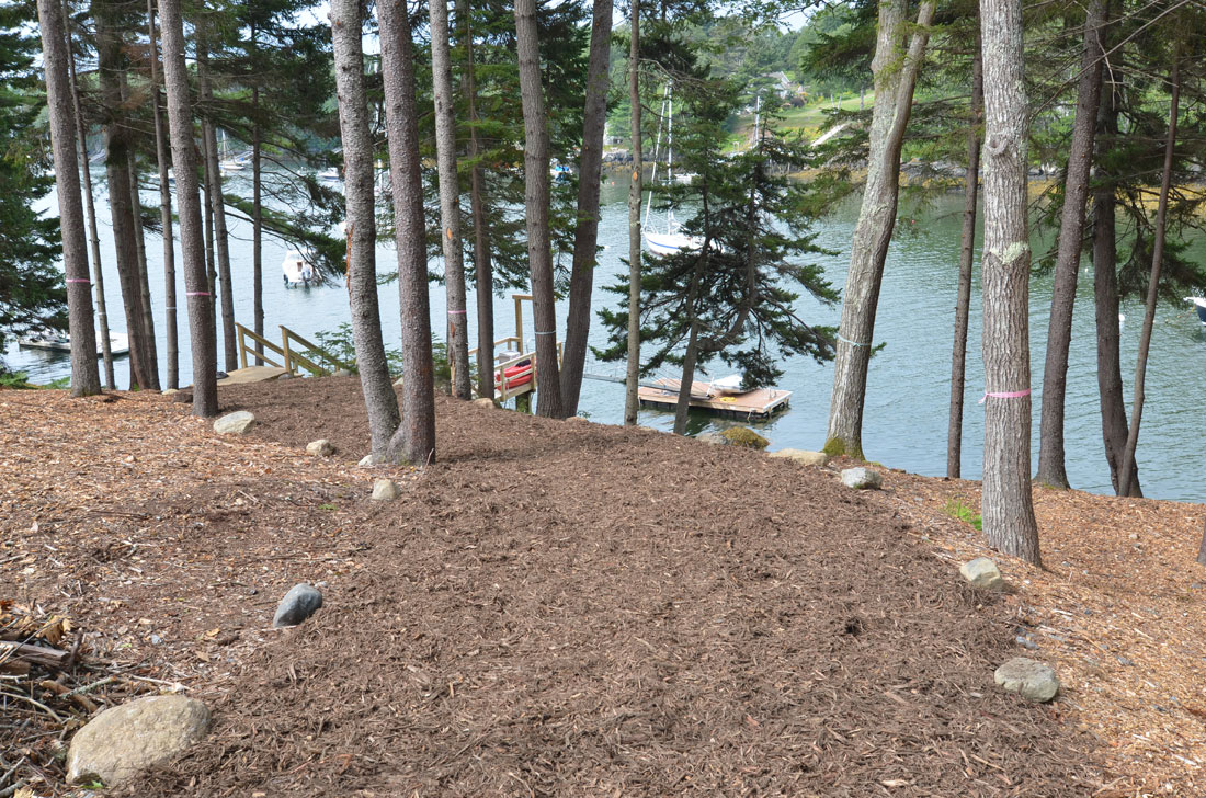 The path to the dock is graded and mulched.